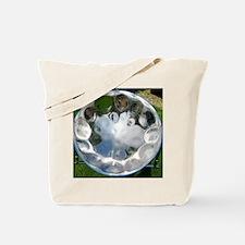 IMG_2527_2 Tote Bag