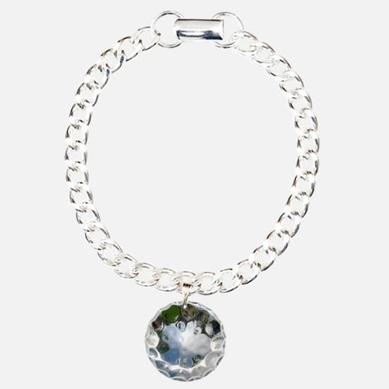 IMG_2527_2 Charm Bracelet, One Charm