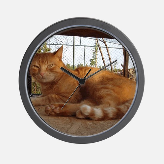 11.5x9gingi Wall Clock