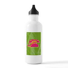 phone-iphone4slider Water Bottle