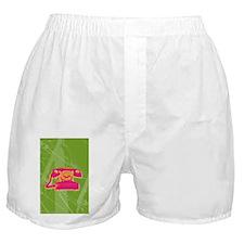 phone-journal Boxer Shorts