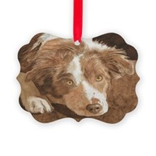 wrenPC Ornament