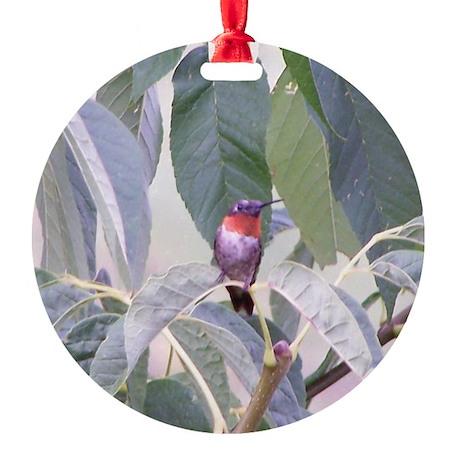 Humming bird Round Ornament