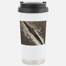 bashaw agss large framed print Travel Mug