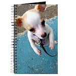 Dancin' Doggy Journal