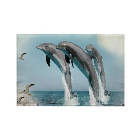 dolphin jump mousepad Rectangle Magnet