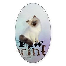 cat3_ipad_sleev_h_f Decal