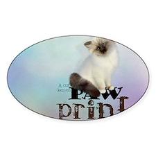 cat3_laptop_skin Decal
