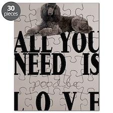 po_ipad_sleev_h_f Puzzle