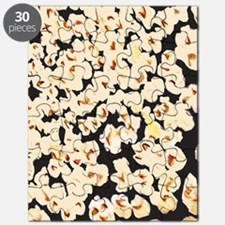 popcorn_cafepress_kindlesleeve Puzzle