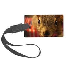 squirrelcloseup Luggage Tag