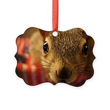 squirrelcloseup Ornament