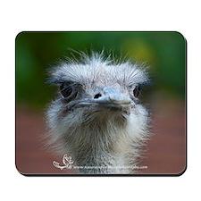 Ostrich I Mousepad