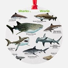 Sharks of the World Ornament