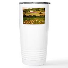 DSCN3039-2 Travel Mug