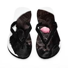 portrait14b Flip Flops