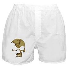 comicskull Boxer Shorts
