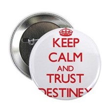 "Keep Calm and TRUST Destiney 2.25"" Button"