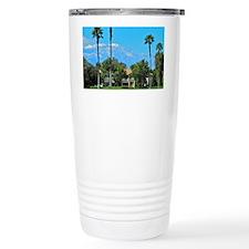 DSCN3854 Travel Mug