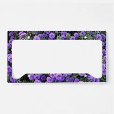 IMG_0021 License Plate Holder