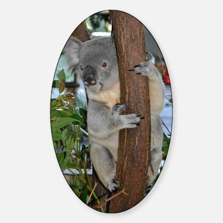 Koala Sticker Designs
