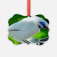 basli cropped Ornament
