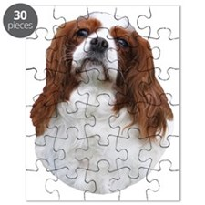 nancyheadpng Puzzle
