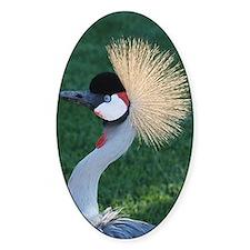 brightercrowned crane crop1100x1500 Decal