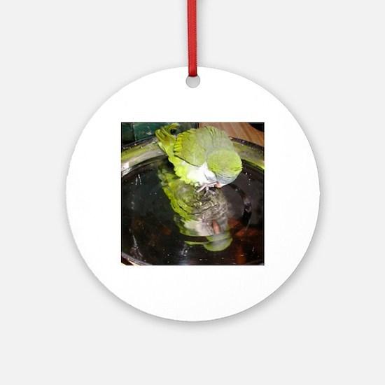 cropmirror image quaker lydia Round Ornament