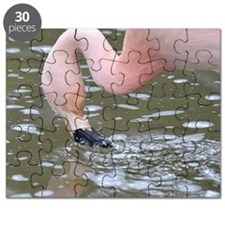 1100Chilean Flamingo Puzzle