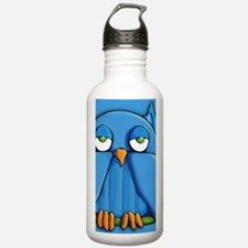 Laptop Aqua Owl aqua Water Bottle