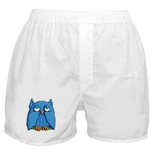 Kindle Aqua Owl Boxer Shorts