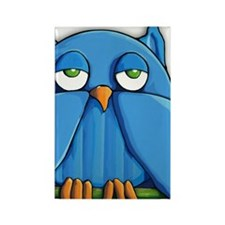 iTouch4 Aqua owl Rectangle Magnet