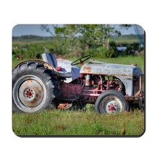 Red Belly Ford Mousepad