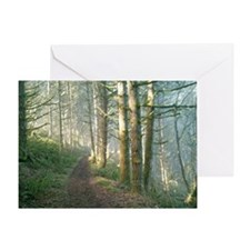 Nature Trail in the Morning Greeting Card