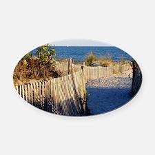 dune path Oval Car Magnet