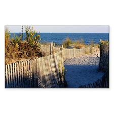 dune path Decal