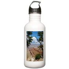 Grand Canyon Through the Trees (V) Water Bottle