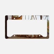 Iopetpeelr License Plate Holder