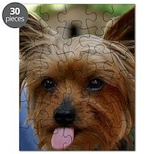 FunnyYorkieShower Puzzle