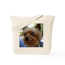YorkshireTerrierShower Tote Bag