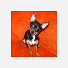 "ChihuahuaShower2 Square Sticker 3"" x 3"""