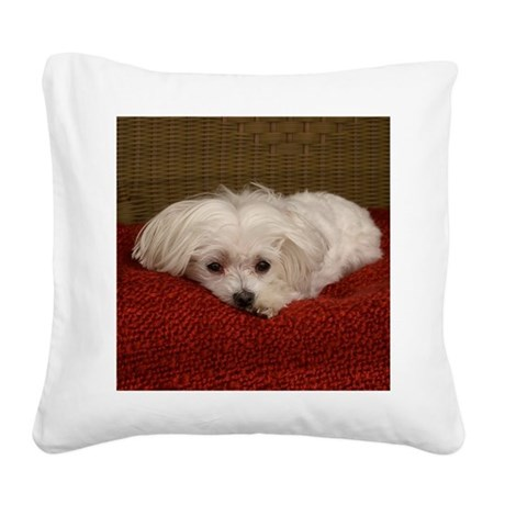 MalteseShower2 Square Canvas Pillow