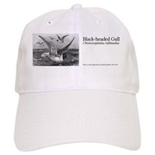 8.31x3_bev_Black-headed-Gul.gif Baseball Cap