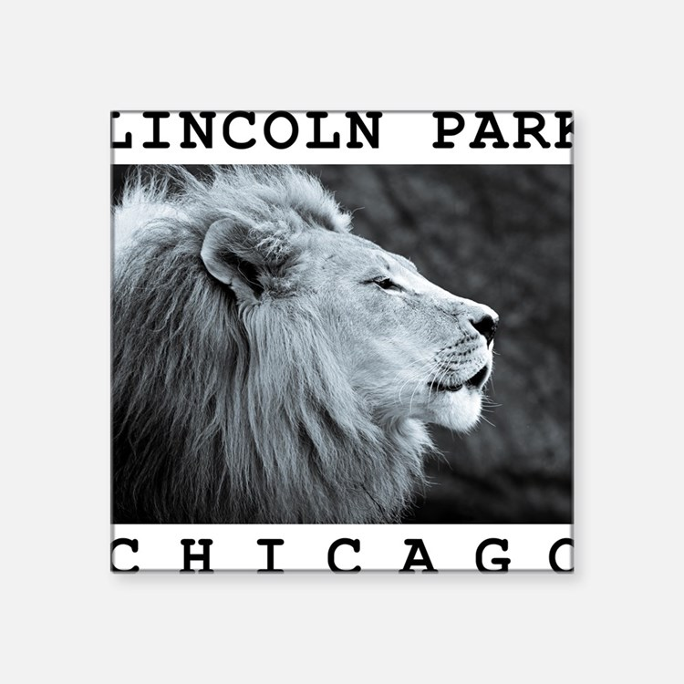 "Lincoln-Park-Chicago Square Sticker 3"" x 3"""