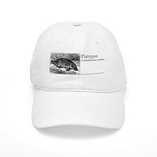 8.31x3_bev_Platypus.gif Baseball Cap