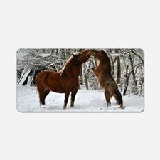 Winter's Kiss Aluminum License Plate