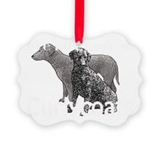 love my curlycoat Picture Ornament