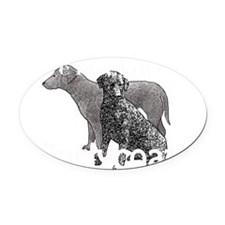 love my curlycoat Oval Car Magnet