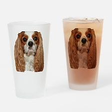 dexhead1212 Drinking Glass